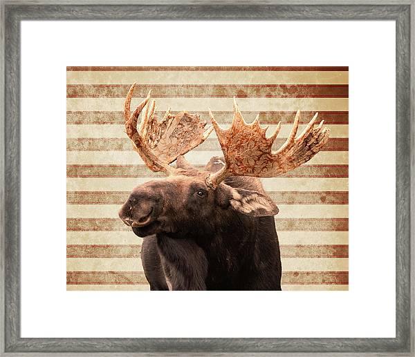 Moosely Framed Print