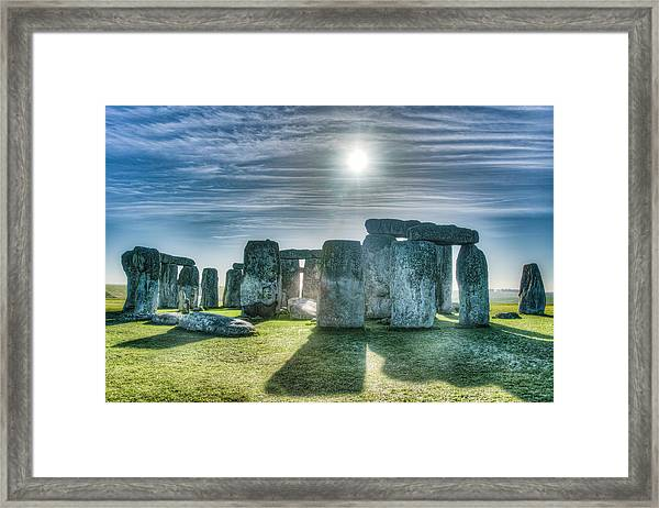 Morning Hedge Framed Print