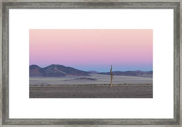 Morning In The Desert Framed Print