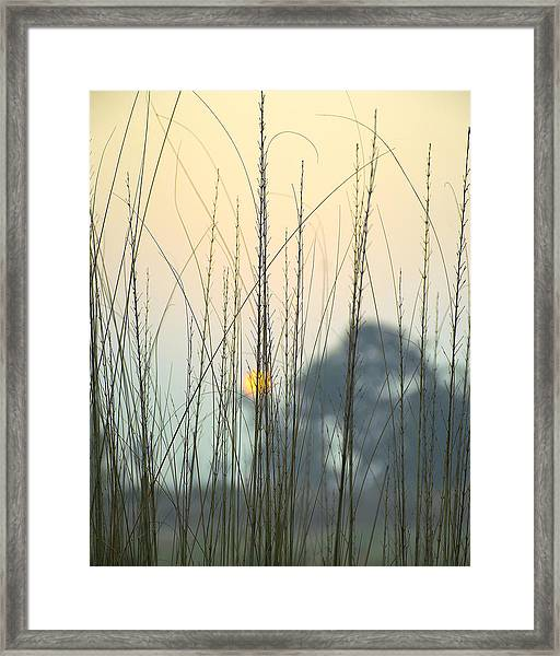 morning Star Framed Print