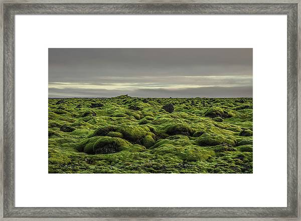 Moss Covered Lava Field On Route 1 Framed Print
