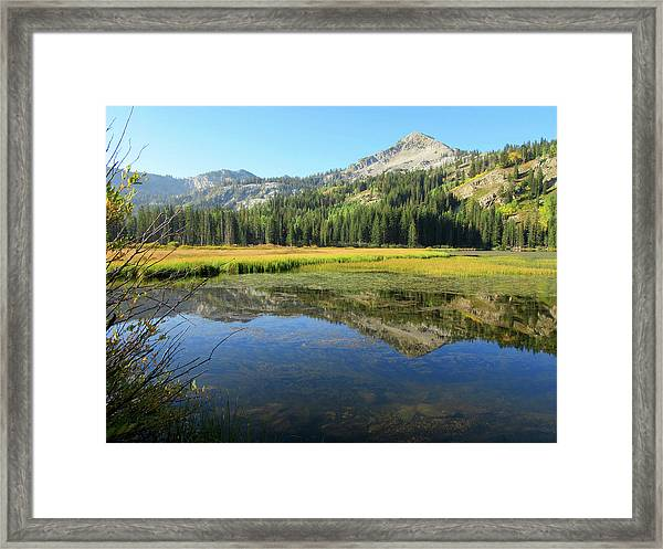 Mount Millicent Reflection Framed Print