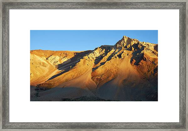Framed Print featuring the photograph Mountain Gold by Whitney Goodey