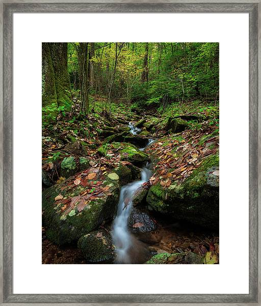 Mountain Stream - Blue Ridge Parkway Framed Print