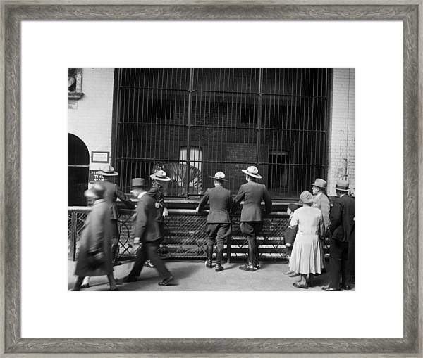 Mounties At The Zoo Framed Print