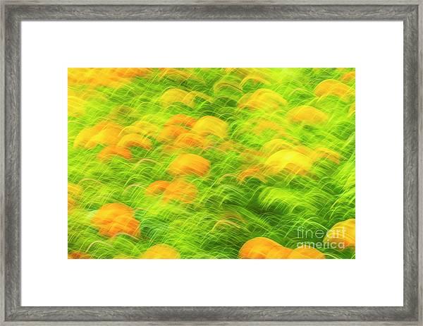 Movement 3 Framed Print