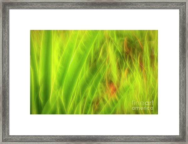 Movement 5 Framed Print