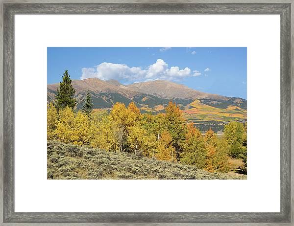 Mt. Elbert Autumn Framed Print by Aaron Spong