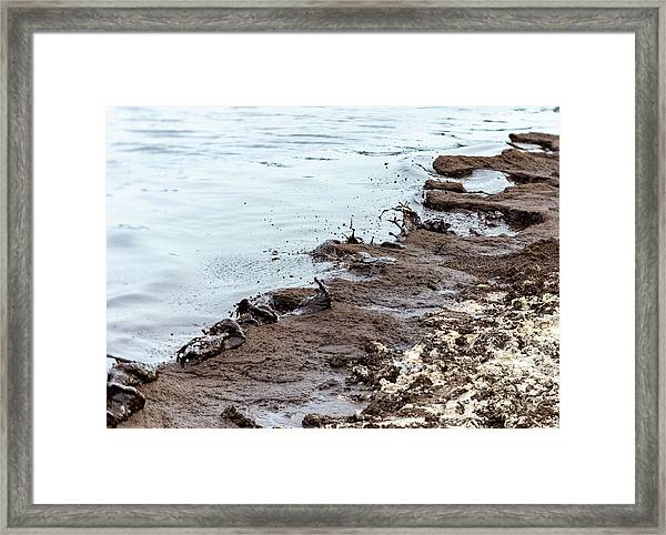 Muddy Sea Shore Framed Print