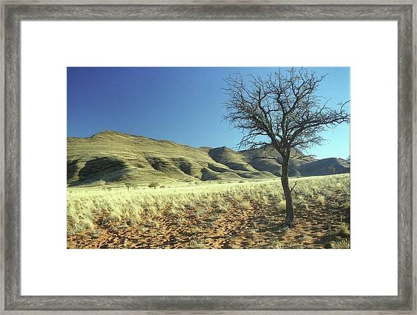 Namibia Framed Print
