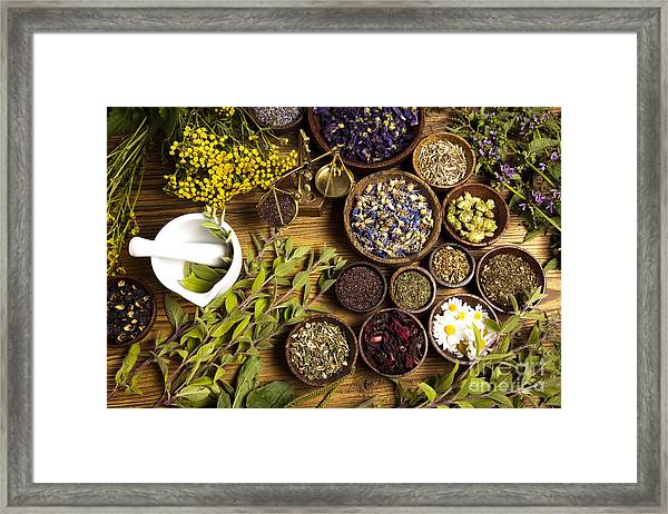 Natural Medicine, Herbs Framed Print
