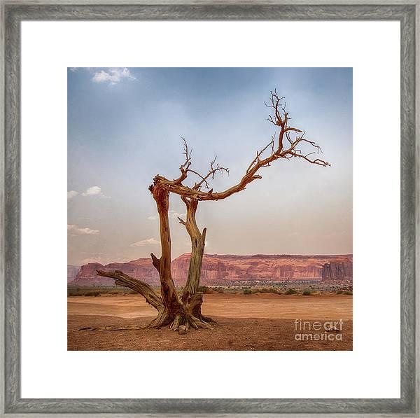 Navajo Jubilee Framed Print