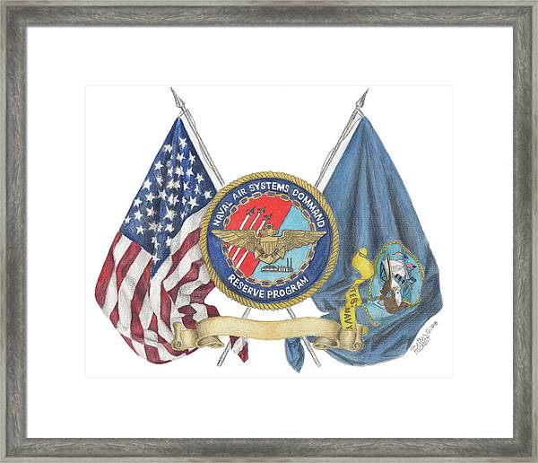 Naval Air Systems Command Reserve Program Framed Print