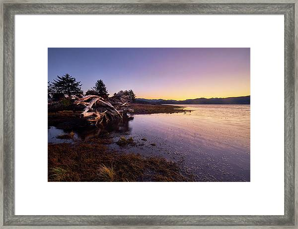 Framed Print featuring the photograph Nehalem Bay Sunrise by Whitney Goodey