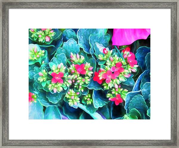 New Blooms Framed Print