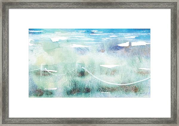 New Zealand Beachscape Framed Print