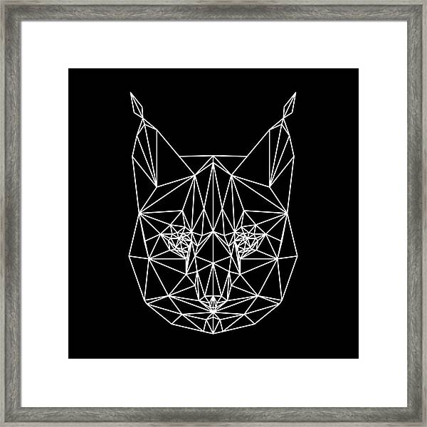 Night Bobcat Framed Print