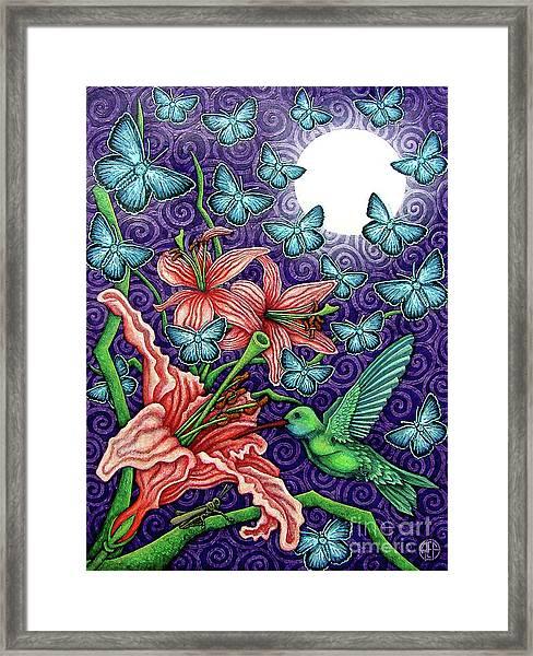 Night Garden 5 Framed Print