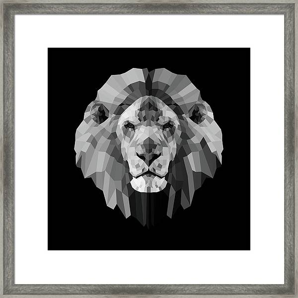 Night Lion Framed Print