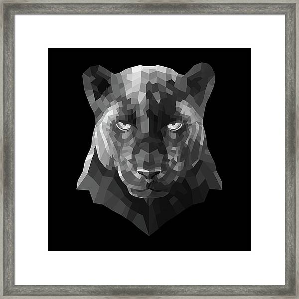 Night Panther Framed Print