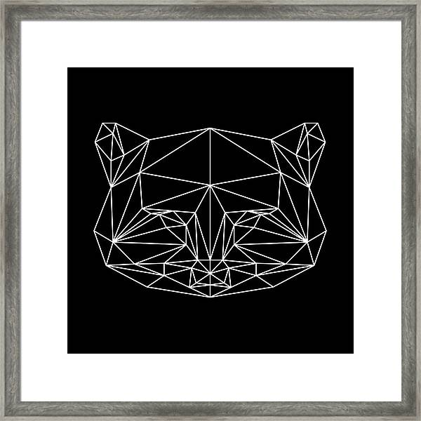 Night Racoon Framed Print