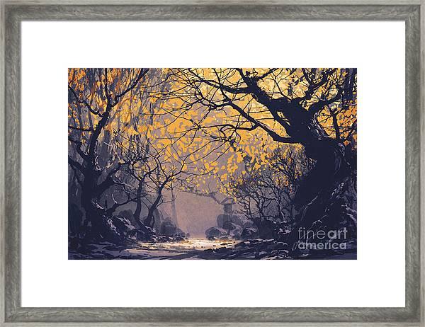 Night Scene Of Autumn Forest,landscape Framed Print