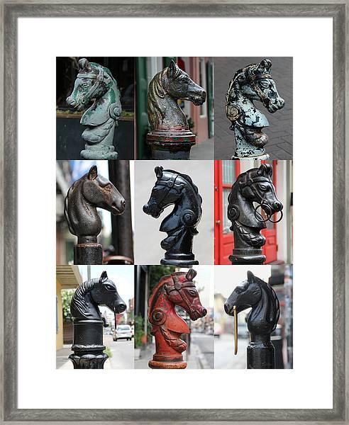 Nine Horse Head Hitching Posts Framed Print