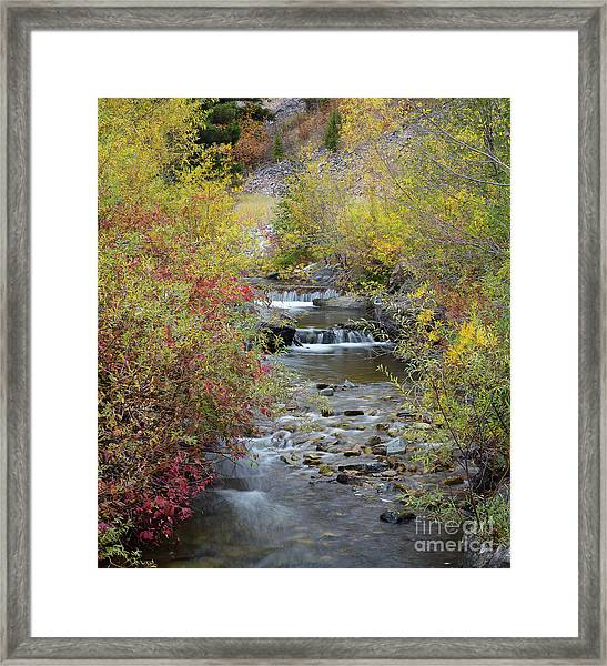 North Fork Of The Salmon River Framed Print