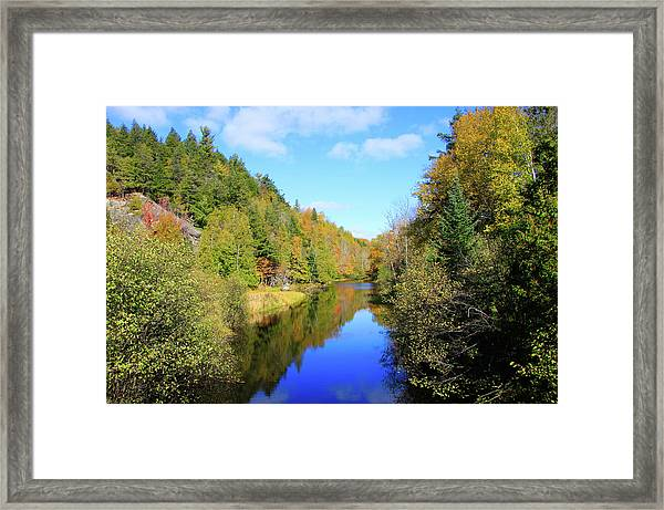 Framed Print featuring the photograph Northwoods Reflection by Dawn Richards