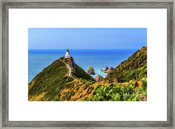 Nugget Point Lighthouse, New Zealand Framed Print