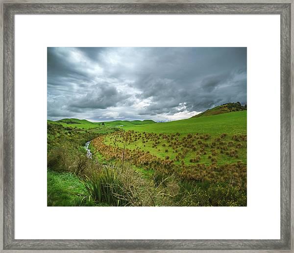 Nz Countryside Framed Print