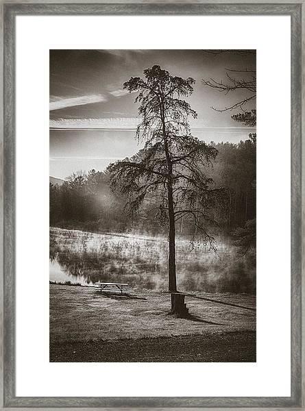 Odd Pair Sepia Framed Print
