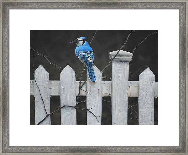 Old Picket Fence Framed Print