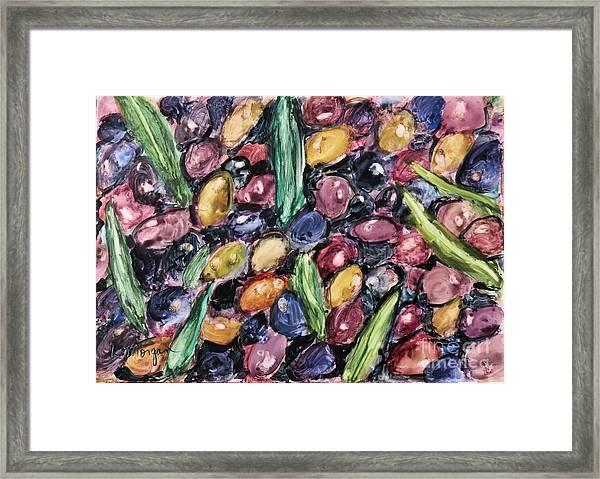 Olives Ready For Pressing Framed Print