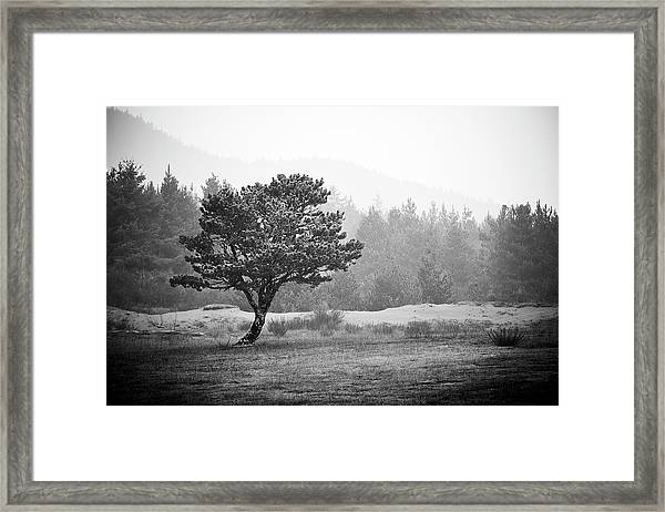 Framed Print featuring the photograph On My Own by Whitney Goodey