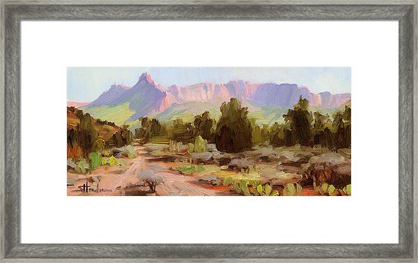 On The Chinle Trail Framed Print