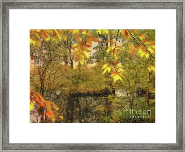 Once A Pond A Time Framed Print