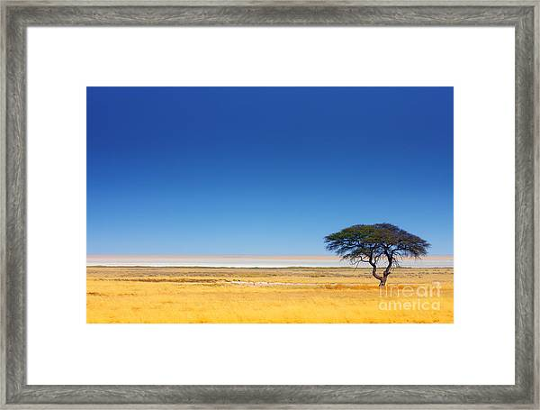 Open Field With Salt Pan In Background Framed Print