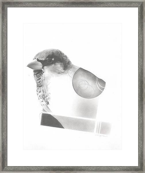 Orbit No. 7 Framed Print