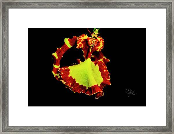 Orchid Study Nine Framed Print
