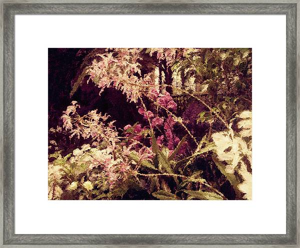 Orchids In The Atrium Framed Print