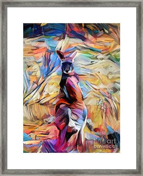 Outback Roo Framed Print