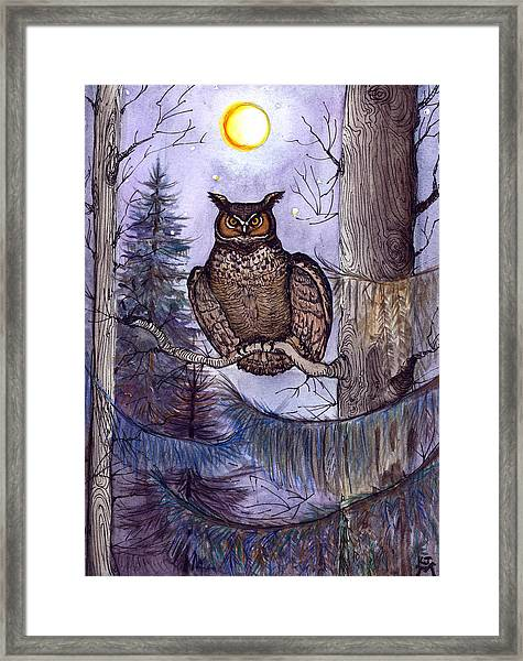 Owl Amid The Evergreen Framed Print