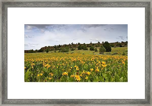 Owyhee Uplands Framed Print