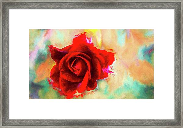 Painted Rose On Colorful Stucco Framed Print