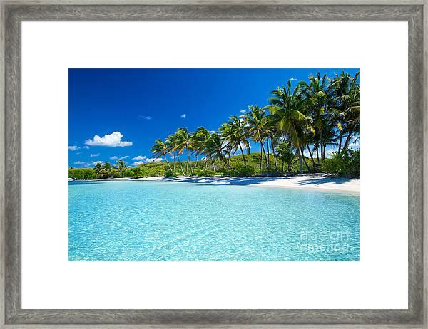 Palm And Tropical Beach Framed Print by Akugasahagy
