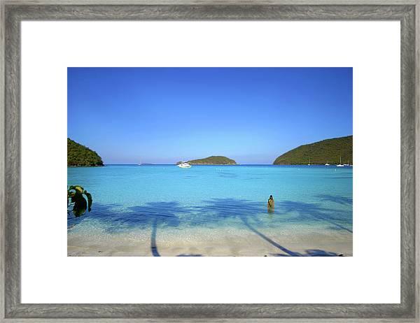 Palm Shadows On The Atlantic Framed Print