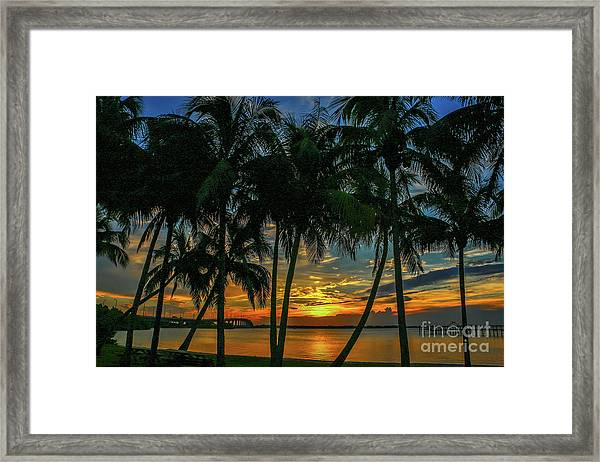 Framed Print featuring the photograph Palm Tree Lagoon Sunrise by Tom Claud