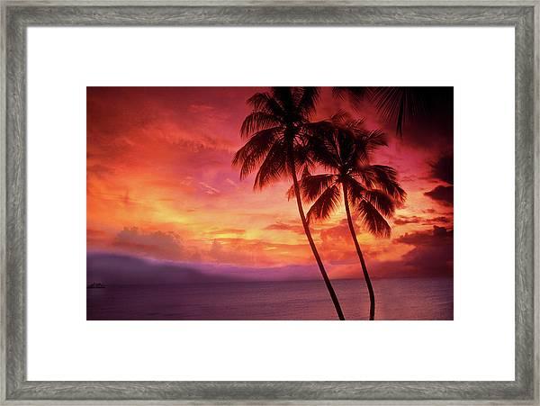 Palm Trees Sunset Framed Print