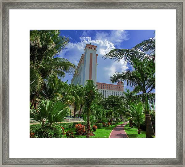 Palms At The Riu Cancun Framed Print